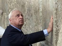 """""""...Ariel Sharon fue considerado el mejor comandante de campo en la Historia de Israel, y uno de sus más grandes estrategas militares..."""" Salvador Sostres - El Mundo, España"""
